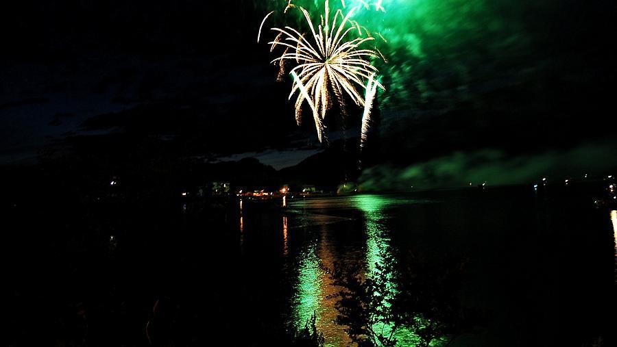 Fireworks Digital Art - Green Highlights by Don Mann