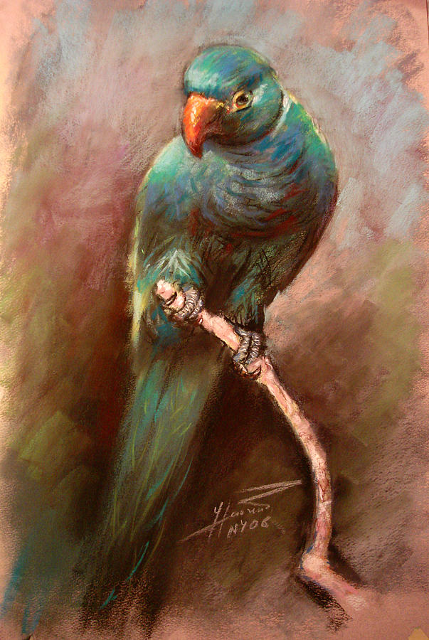Green Parrot Pastel - Green Parrot by Ylli Haruni