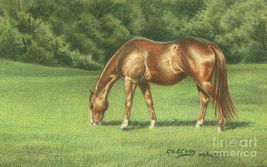 Colored Pencil Drawing - Green Pastures by Carrie L Lewis