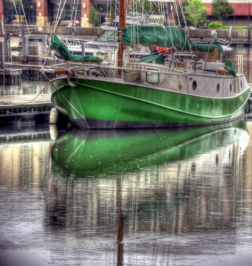 Hdr Photograph - Green With Envy by Brian Fisher