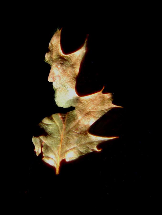 Greenman Photograph - Greenman by Arla Patch