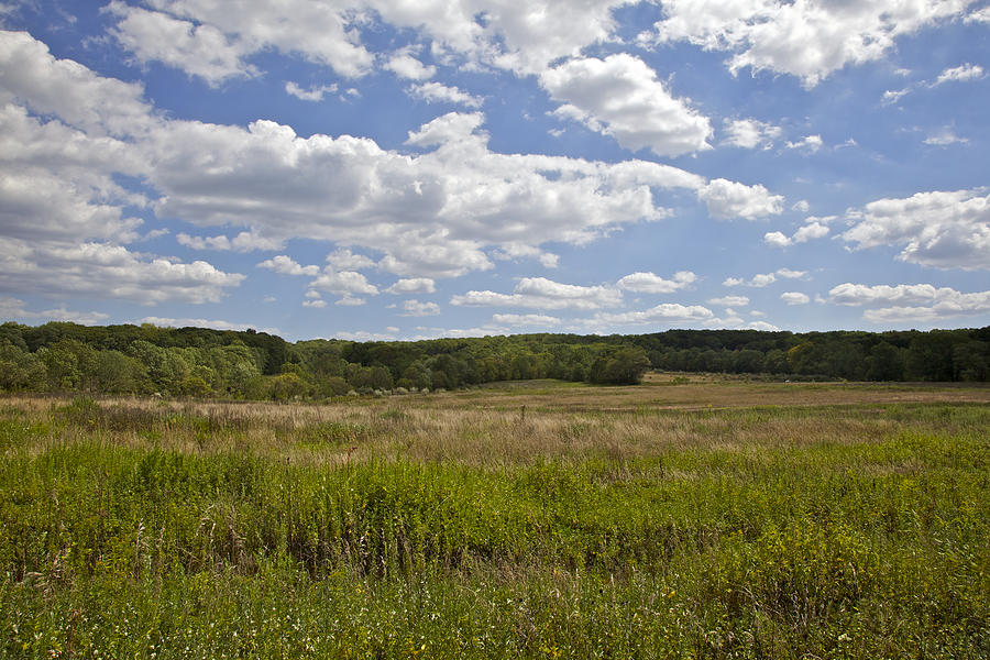 Bunker Hill Photograph - Griggstown Native Grassland Preserve by David Letts
