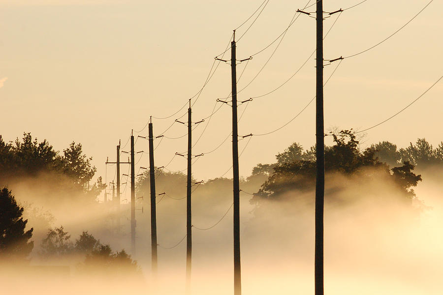 Fog Photograph - Ground Fog With High Wires by Bruce Kenny