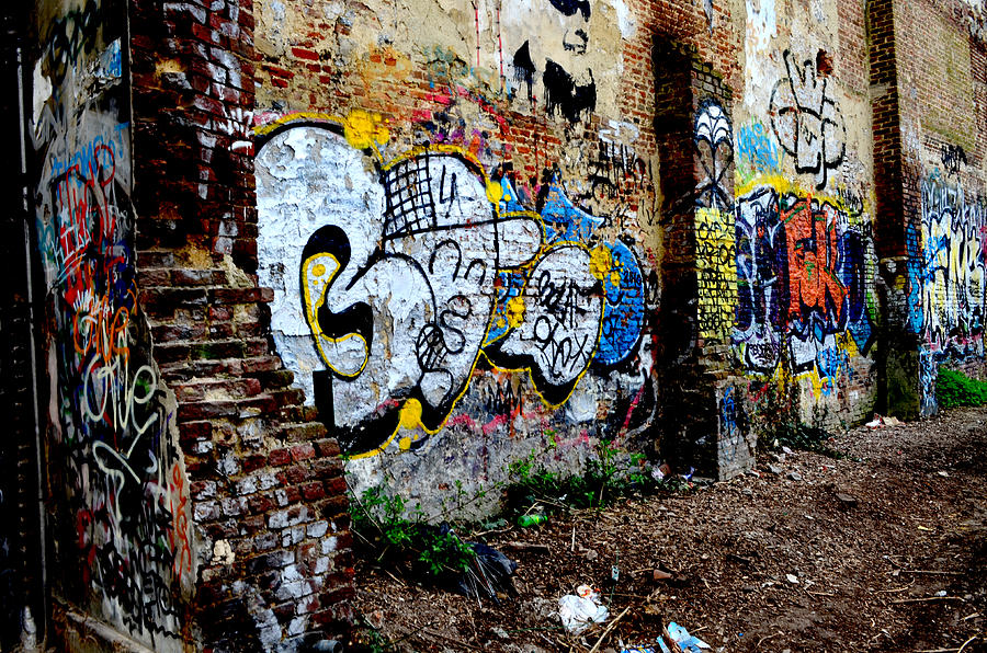 grunge and graffiti photograph by stacey raven finnigan