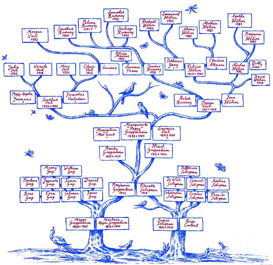 Ancestor Photograph - Guggenheim Family Tree by Science Source