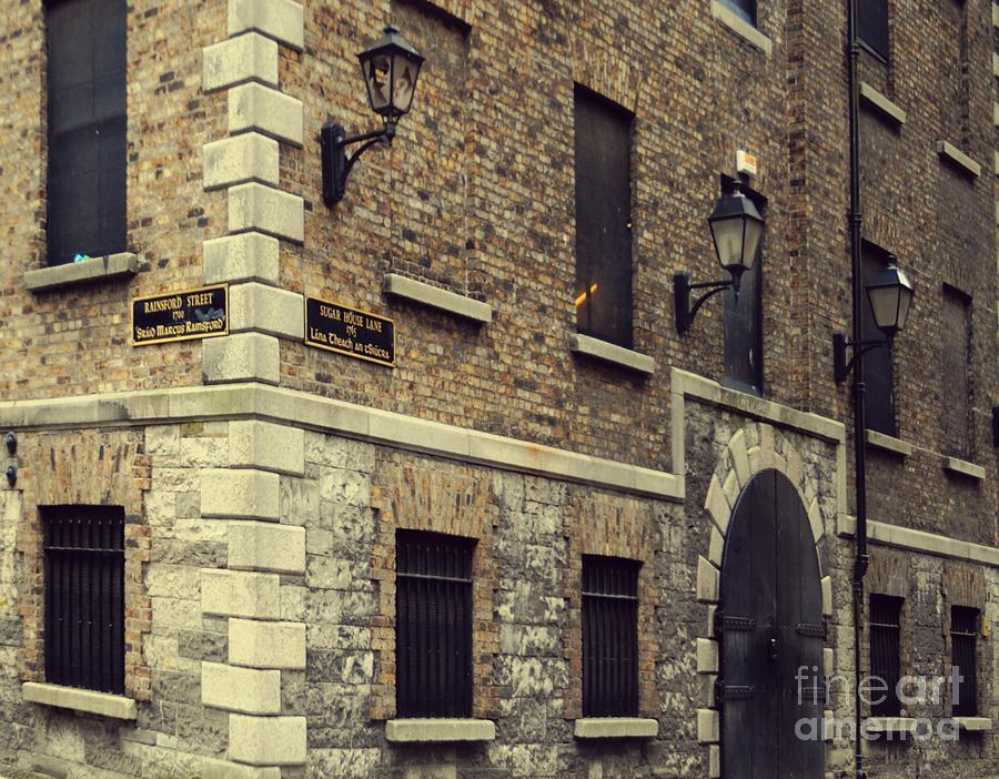 Dublin Pyrography - Guinness Storehouse Dublin by Louise Fahy