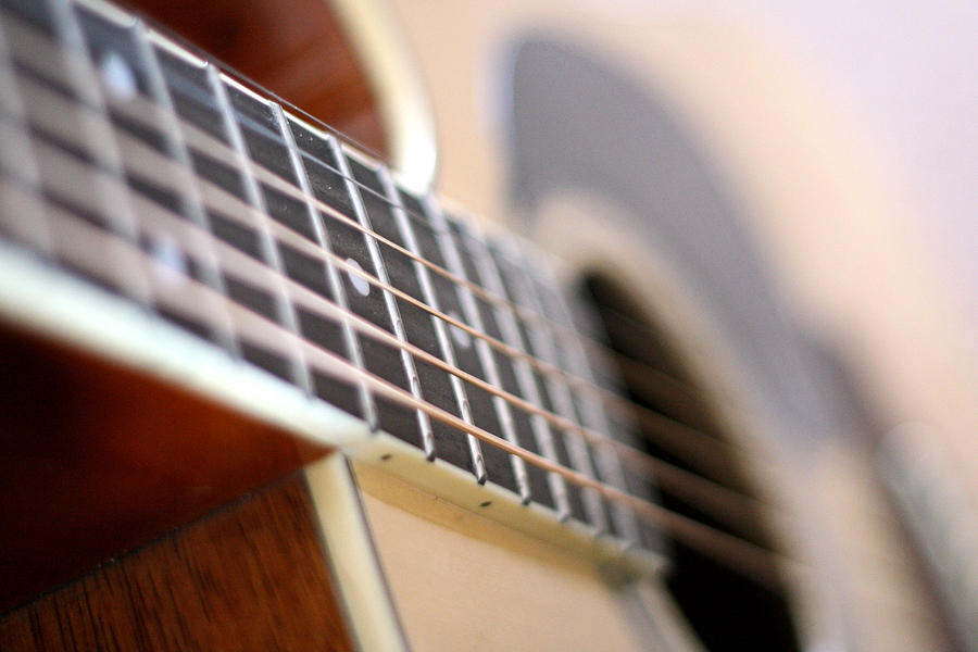 Pickup Photograph - Guitar 1 by James Iorfida