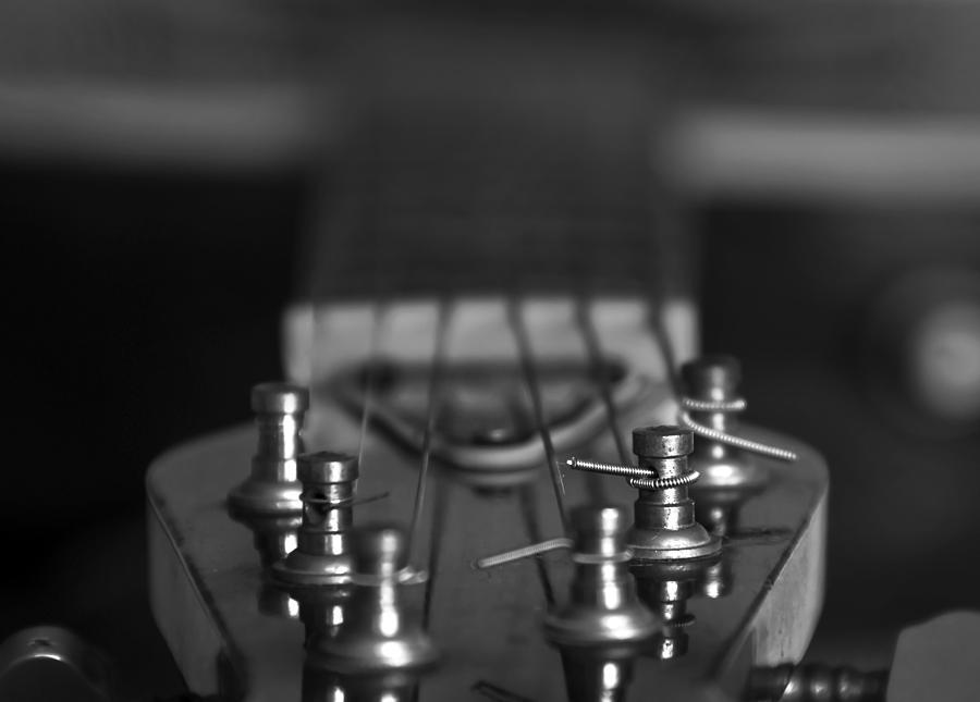 Accord Photograph - Guitar01 by Svetlana Sewell