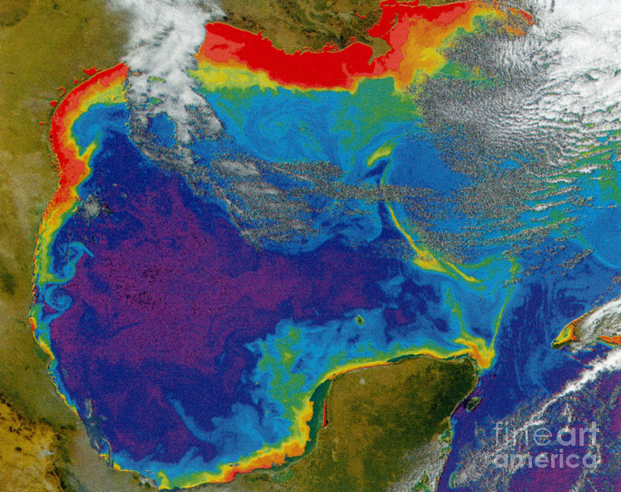 Aerial View Photograph - Gulf Of Mexico Dead Zone by Science Source