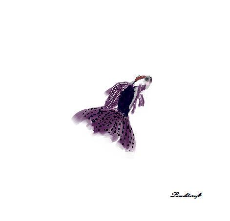 Fish Drawing - Guppy by Watcharee Suebkhajorn