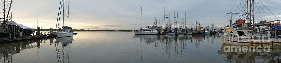 Harbour Photograph - Habour Morning by James Yang