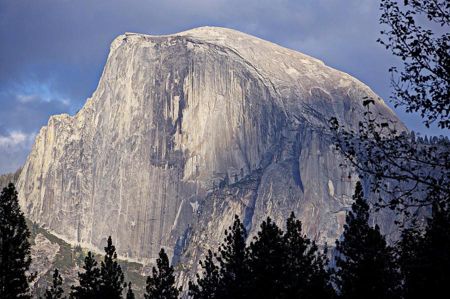 Sierra Nevadas Photograph - Half Dome by Lynn Bawden