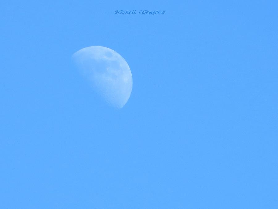 Half Pearl In Blue Photograph by Sonali Gangane