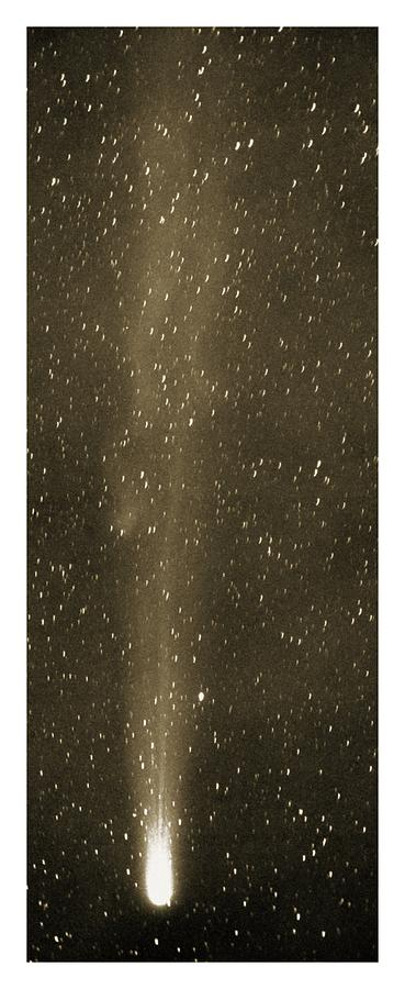 Halley's Comet Photograph - Halleys Comet In May 1910 by Detlev Van Ravenswaay