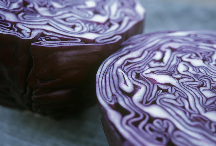 Red Cabbage Photograph - Halved Red Cabbage by Maxine Adcock