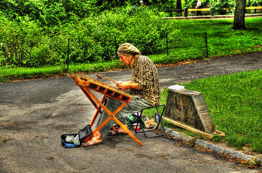 Hammered Dulcimer Musician In Central Park Photograph By Randy Aveille