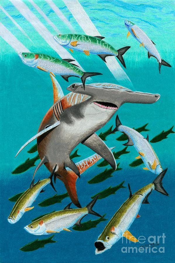 Great Hammerhead Shark Drawing - Hammertime by Jonathan Teeter