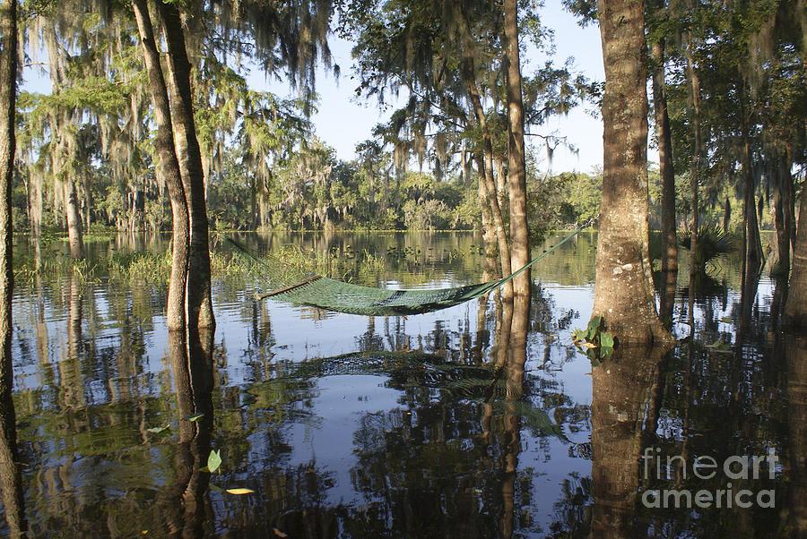 Tropical Photograph - Hammock Anyone by Jack Norton