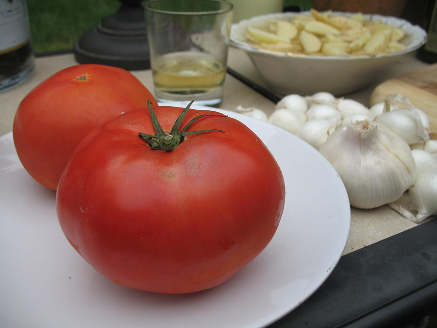 Tomatoes Photograph - Hamptons Summer Dinner by Colleen Rugg