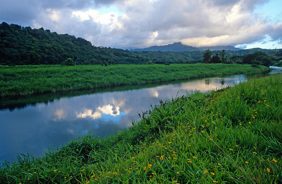 Hawaii Photograph - Hanalei River Reflections by Kathy Yates