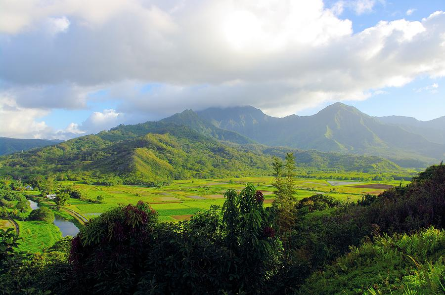 Kauai Photographs Photograph - Hanalei Valley View by John  Greaves
