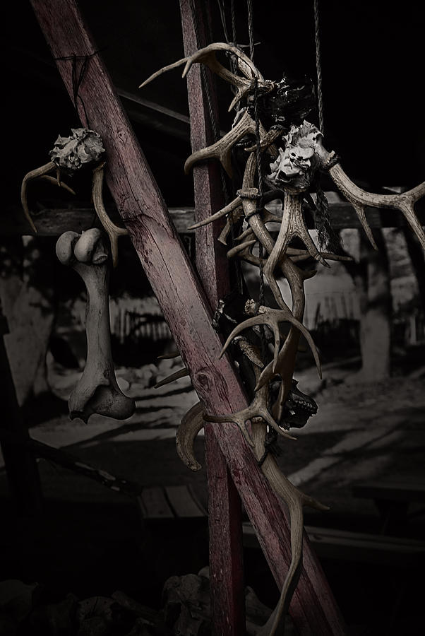 Aged Photograph - Hanging Rack by Kelly Rader