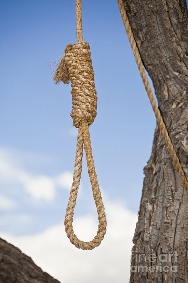 Hangmans Noose In A Tree Photograph by Bryan Mullennix