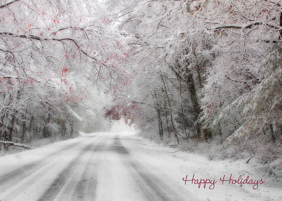 Happy Holidays Photograph - Happy Holidays - Clarks Valley by Lori Deiter