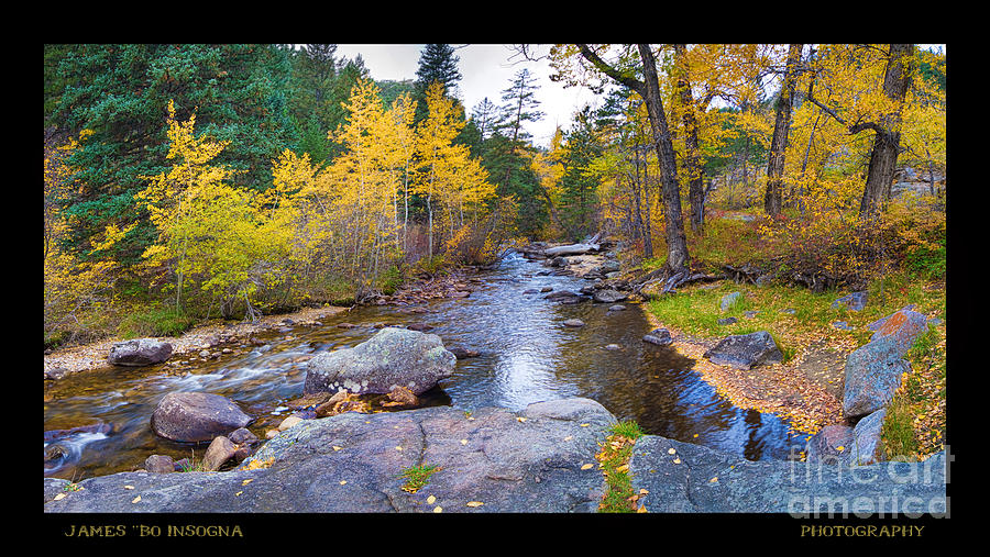 Colorful Photograph - Happy Place In The Woods Panorama Poster  by James BO  Insogna