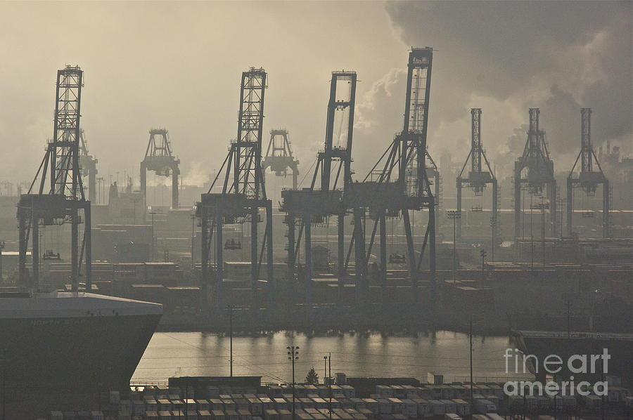 Sean Griffin Photograph - Harbor Cranes by Sean Griffin