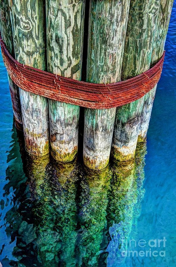 Harbor Photograph - Harbor Dock Posts by Michael Garyet