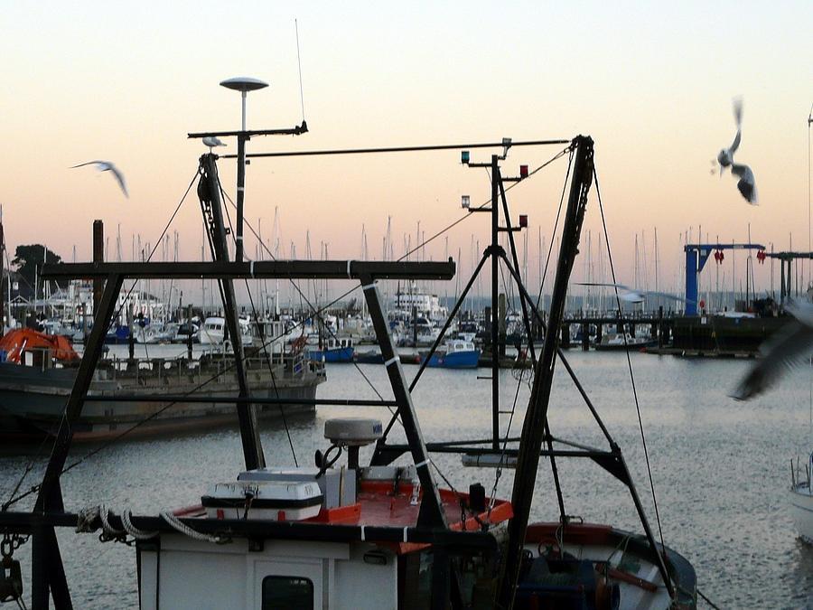 Lymington Photograph - Harbor by Rdr Creative