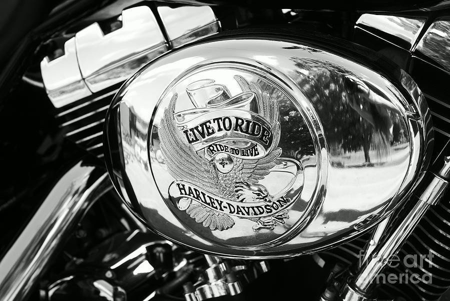 harley davidson bike - chrome parts 22 photographaimelle
