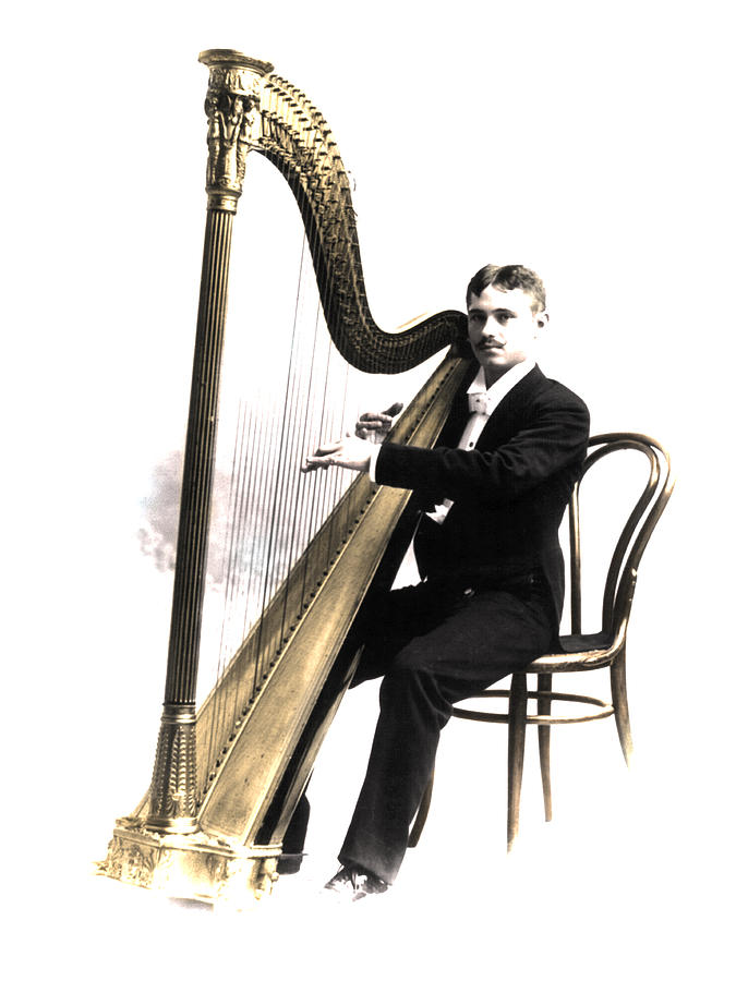 Harpist Photograph - Harp Player by Andrew Fare