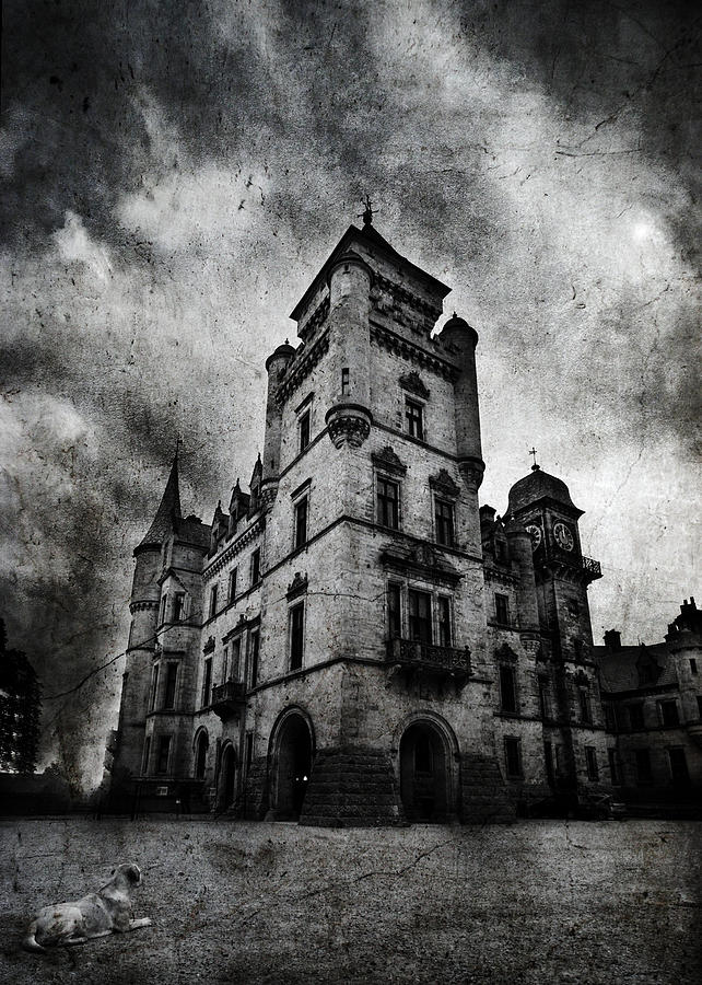 Palace Photograph - Haunted 2 by Laura Melis