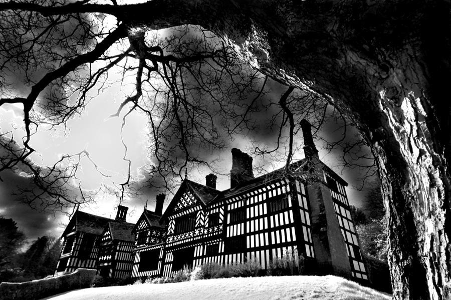 Branch Photograph - Haunted Hall by Matt Nuttall
