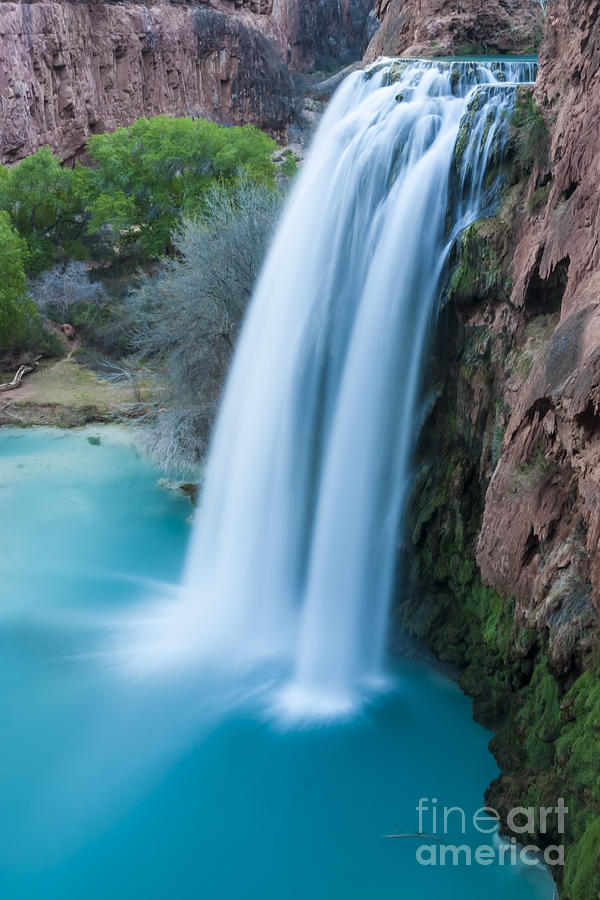 Moss Photograph - Havasu Falls I by Scotts Scapes