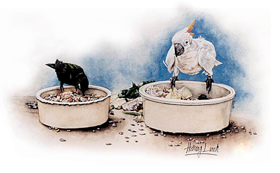 Having Lunch by Patrice Clarkson