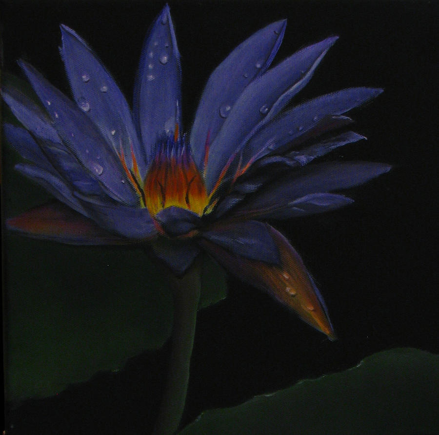 Water Lily Painting - Hawaiian Water Lily - Purple by Sherry Robinson