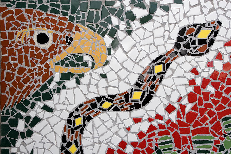 Red Photograph - Hawk And Snake Mosaic by Carol Leigh