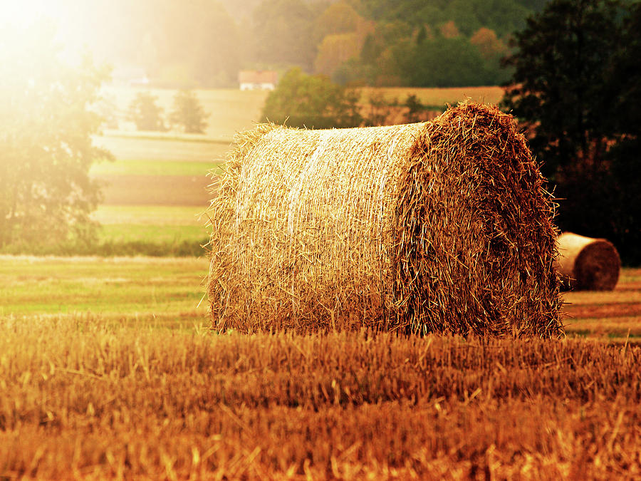Horizontal Photograph - Hay Bale by Photographe