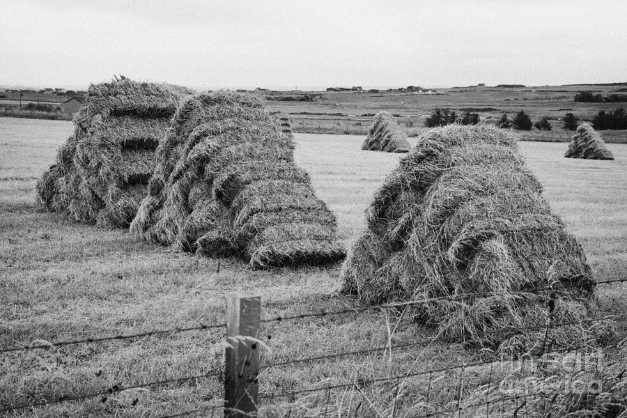 Hay Bales Stacked In Triangular Inverted Vee Formation To ...