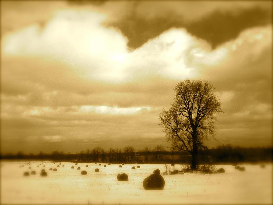 Landscape Photograph - Hay Field by Arthur Barnes