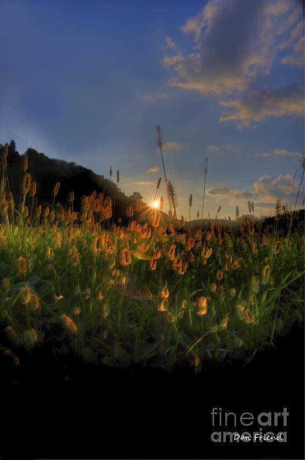 Hay Field Photograph - Hay Field by Dan Friend