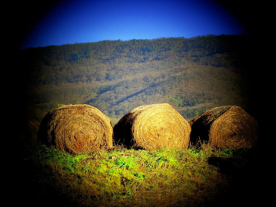 Mountains Photograph - Hay Rolls On Mountain by Michael L Kimble