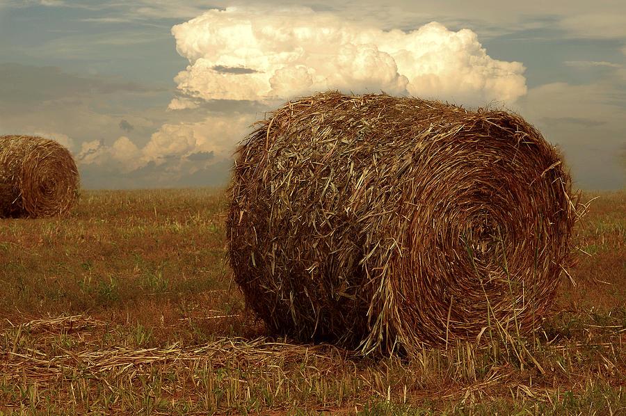 Hay Photograph - Hayfield by Robert Hudnall