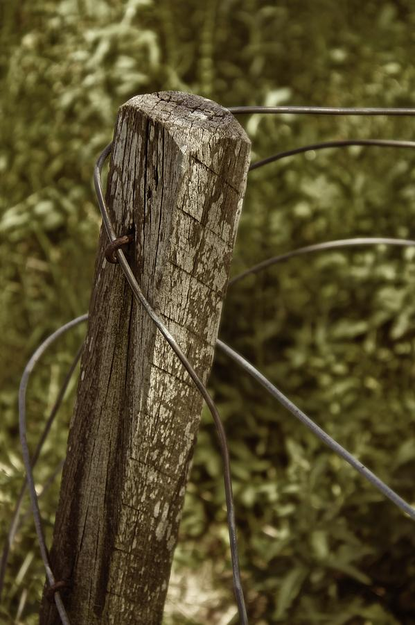 Country Photograph - Haywire by Odd Jeppesen