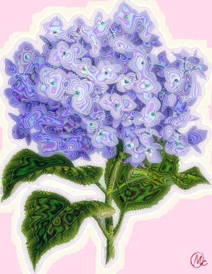 Purple Digital Art - Hazy Hydrangea by Mary M Collins
