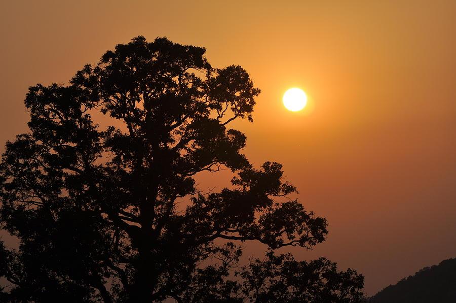 Sunset Photograph - Hazy Sunset by Marty Koch
