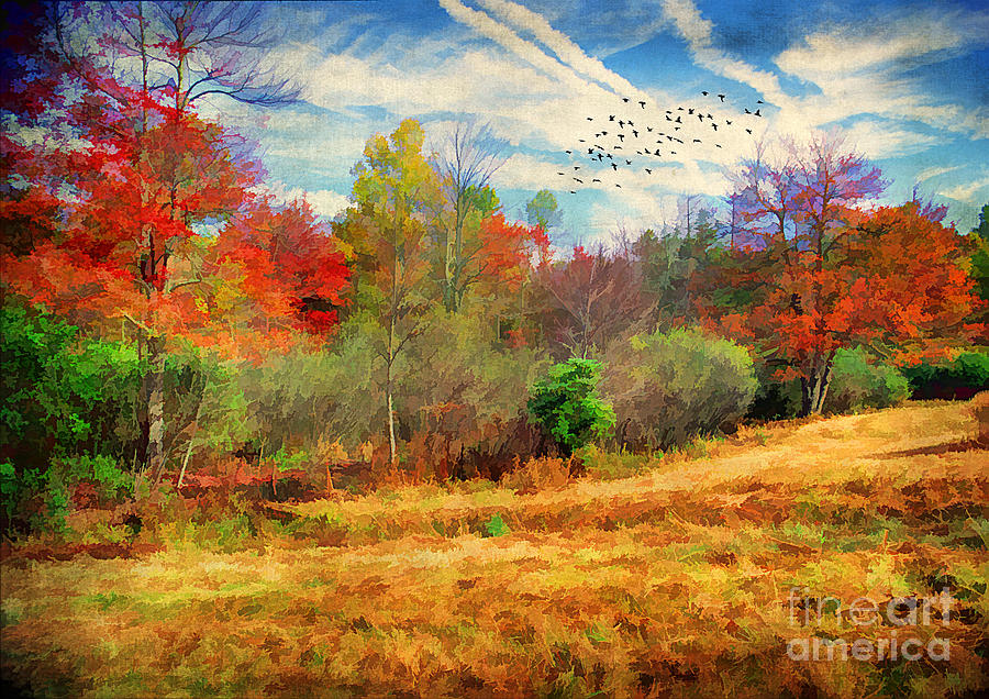 Autumn Photograph - Heading South by Darren Fisher